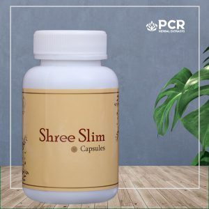 shree slim